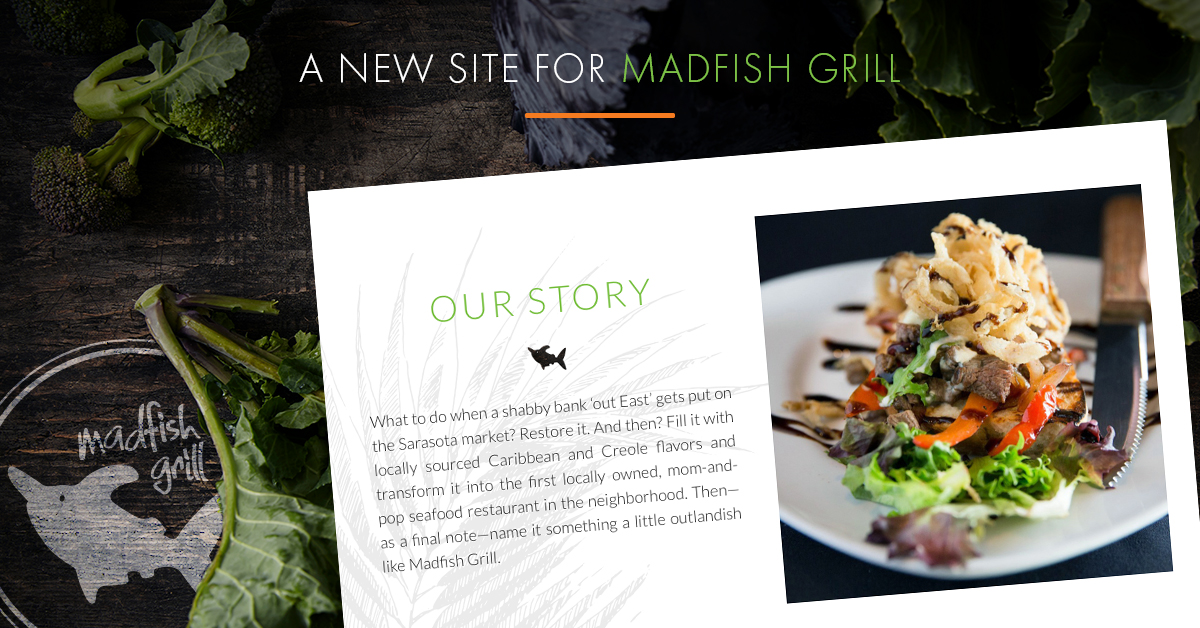 Madfish Blog Image